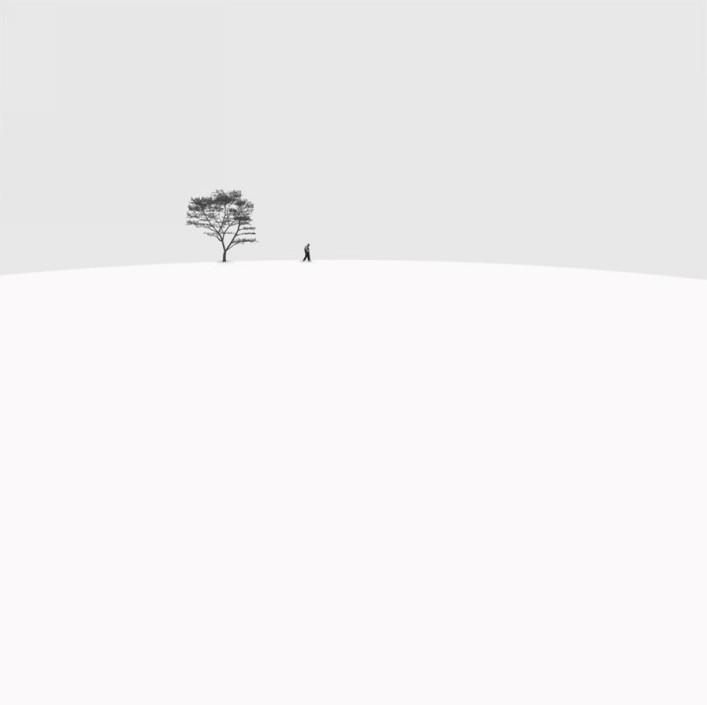 孤独的行者 作者:hossein zare.