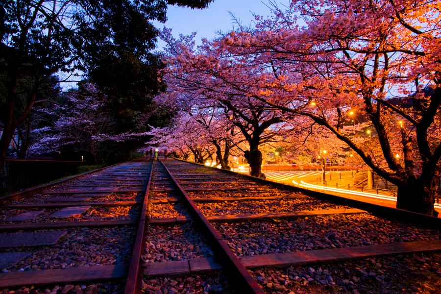 日本囹�a��.X�_福建师范大学日语专业有到日本的交换生吗?