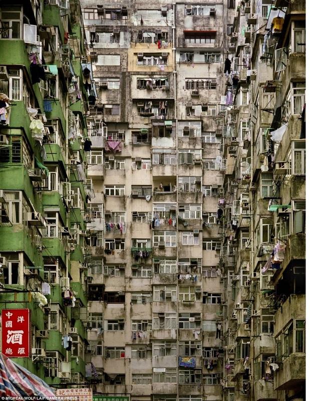 香港龙虎豹套图_