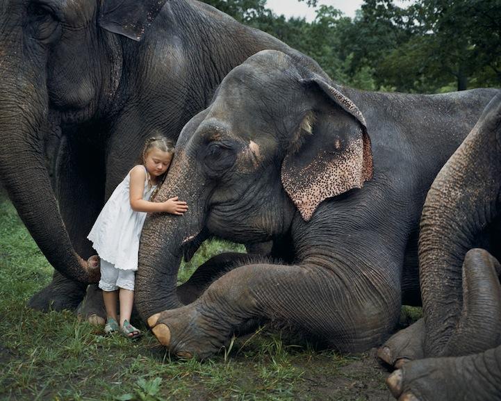 和动物们形同手足:阿米莉亚的动物世界 组图