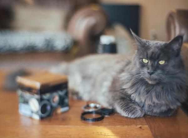 一支几百元的50mm f/1.8入门定焦镜头,透过摄影玩家巧手改造,拍出来的效果也能与高阶移轴镜互相匹敌。美国摄影师Jay Cassario研究了许多网路文章及移轴镜头原理后,决定先从Nikon AF 50mm f/1.8D开始进行改造,只需几个简单DIY步骤,就能成功拍摄出移轴镜头的特别效果。  移轴镜头也可以自行动手改装,美国摄影师Jay Cassario自网路购得一支Nikon AF 50mm f/1.