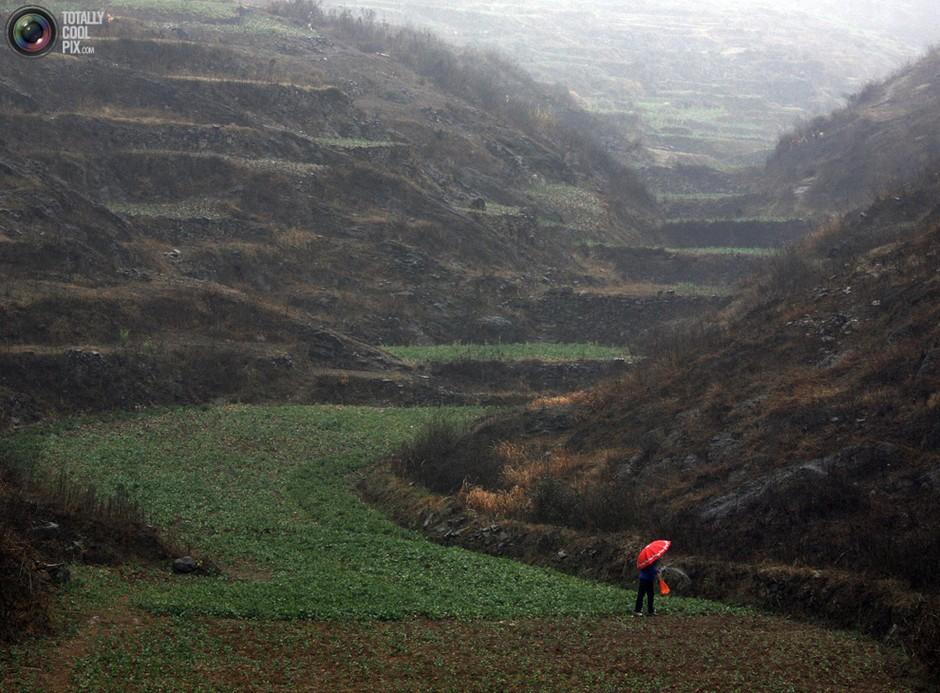 河南,一名妇女打着伞在雨中劳作- 深瞳渊源,品味经典!