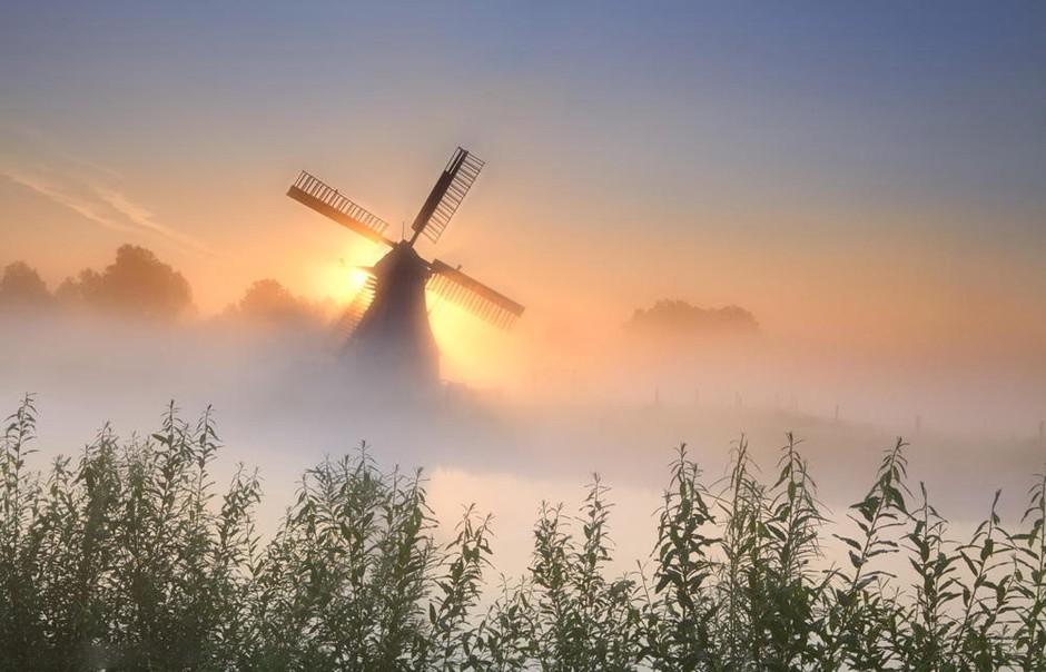 荷兰风车读后感