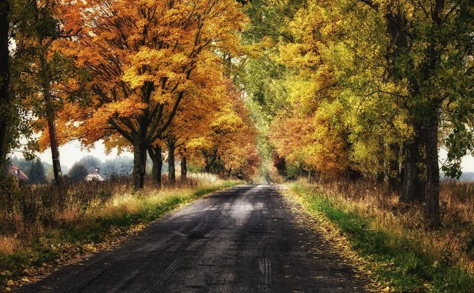 捷克秋天风景图片