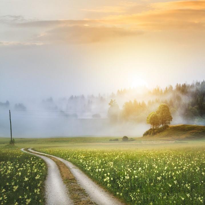 世界最漂亮的风景囹�a_【美图欣赏】走进油画般乡村景色 学拍唯美风光摄影 - a加佳 - a加佳