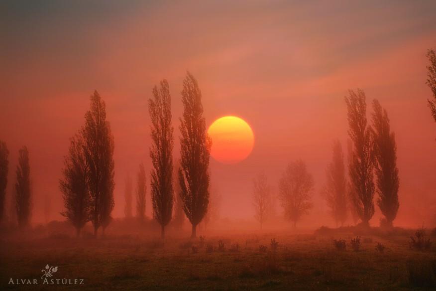 他的山林风景照,较多的是暖色系,夕阳,红叶,雾气,常常是画面中的主要