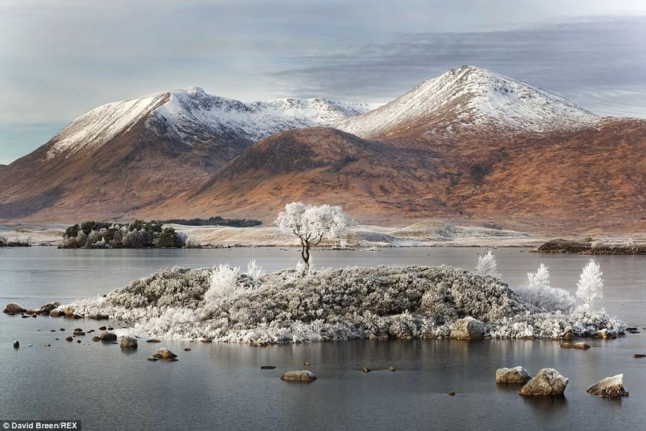 英国摄影大赛作品 展现绝美自然风光 组图