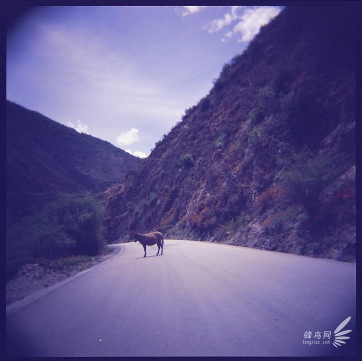 壁纸 大峡谷 风景 707_705
