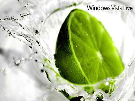 Windows vista 标准1024X768精美壁纸