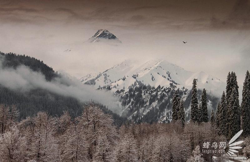 北京下雪意犹未尽 缤纷雪景讲诉冰雪奇缘 - 尼采 - 尼采的博客