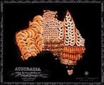 看着很有食欲 用特色食物拼成世界地图