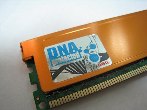 普及DDR3内存风暴 金邦白金2G-1333震撼上市