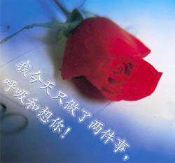 qq爱情表情包大全_可爱的QQ爱情表情,QQ可爱表情,QQ可爱图_兔斯基qq表情包大全_QQ表情 ...