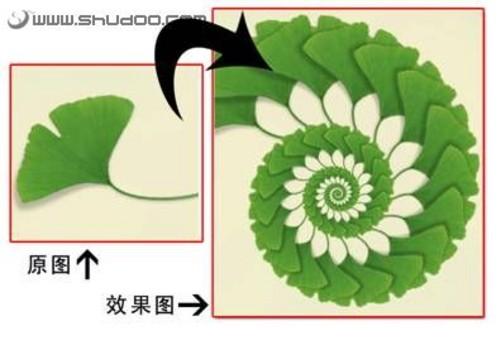 ps图案填充素材植物
