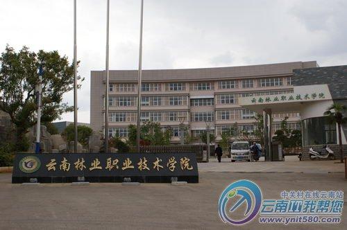 云南林业职业技术学院图片