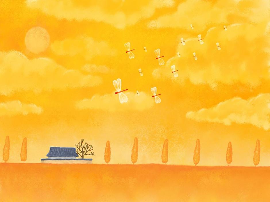 ipad2壁纸 唯美 童话清新夏日风系列 第3页