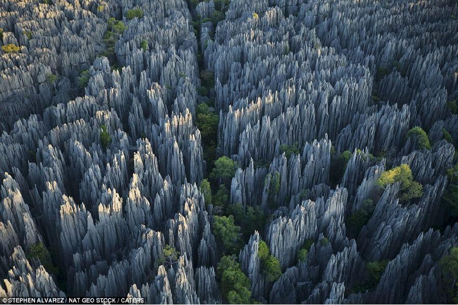 摄影师探访世界最大石林 冒险拍壮观图片 - 高山松 - gaoshansong.good 的博客