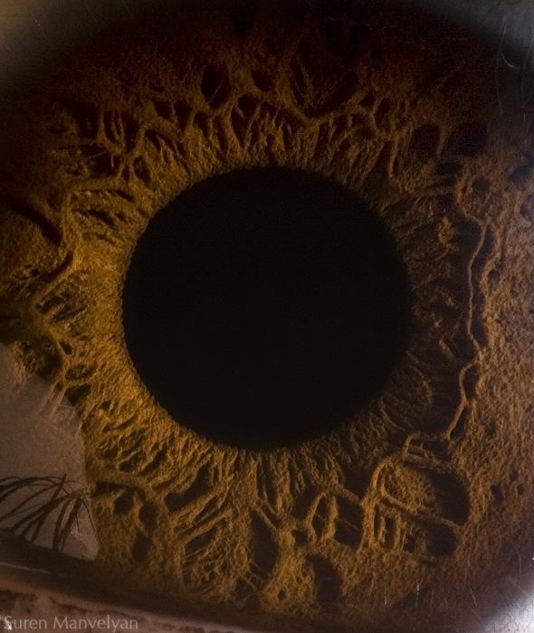 你美丽的眼睛 摄影:suren manvelyan 组图