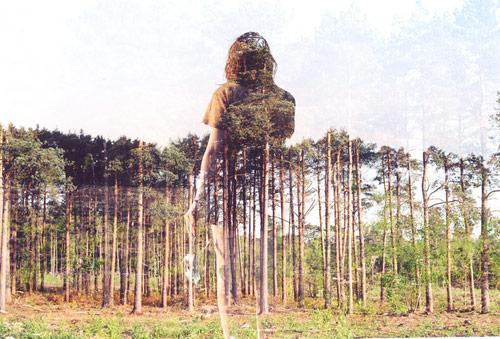 人与自然的双重曝光魅力 摄影:oliver morris. 组图