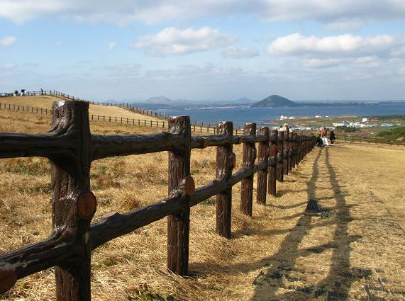 韩国济州岛 最浪漫的爱情海岛之旅 组图