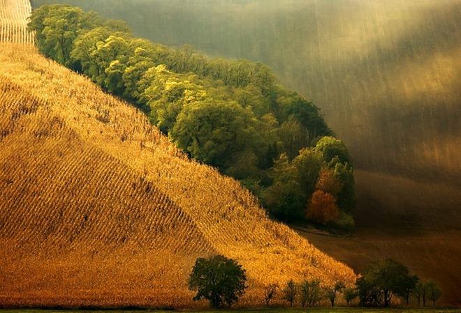 摄影师镜头下那些美如仙境的梦幻风景 组图