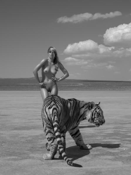 看美女如何俘虏野兽:sylvie人体作品套图 第14张