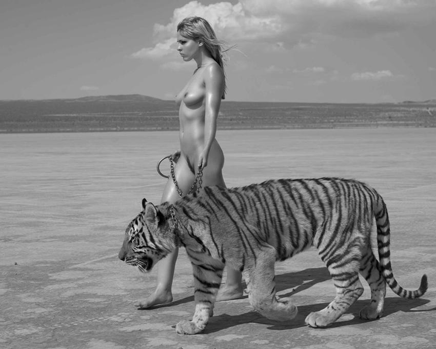 看美女如何俘虏野兽:sylvie人体作品套图 第3张