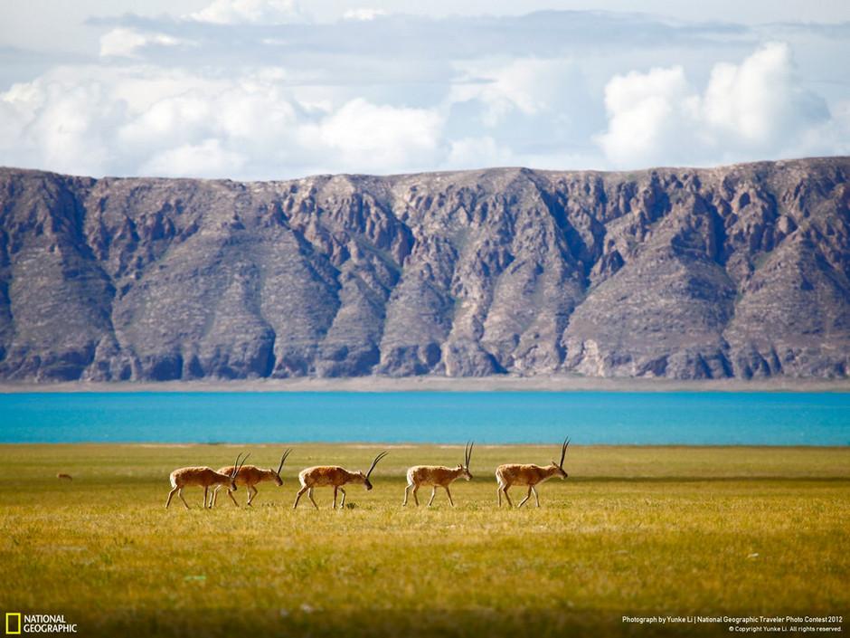 高清震撼:2012国家地理旅行摄影精选 组图