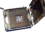 Intel 奔腾4 520 2.8GHz(盒)